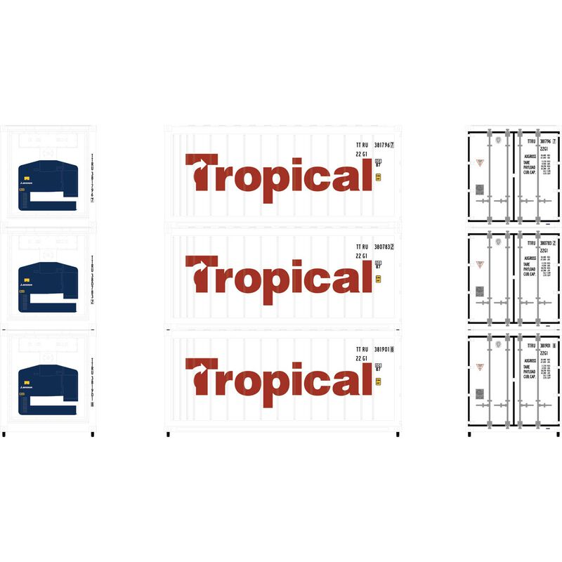 N 20' Reefer Container Tropical (3)