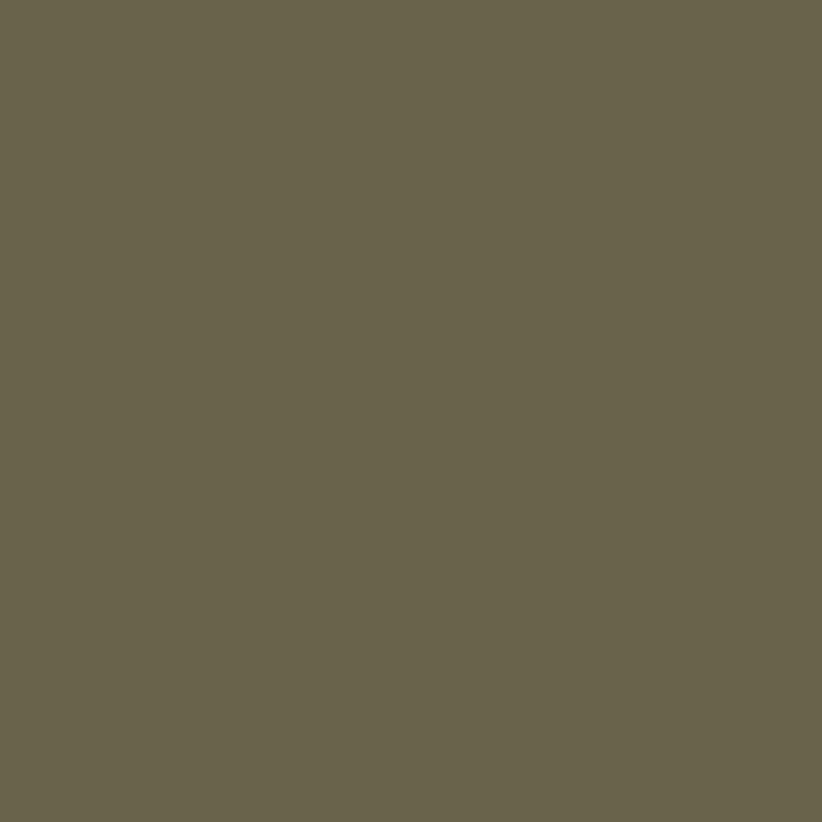 US Army Olive Drab ANA 319