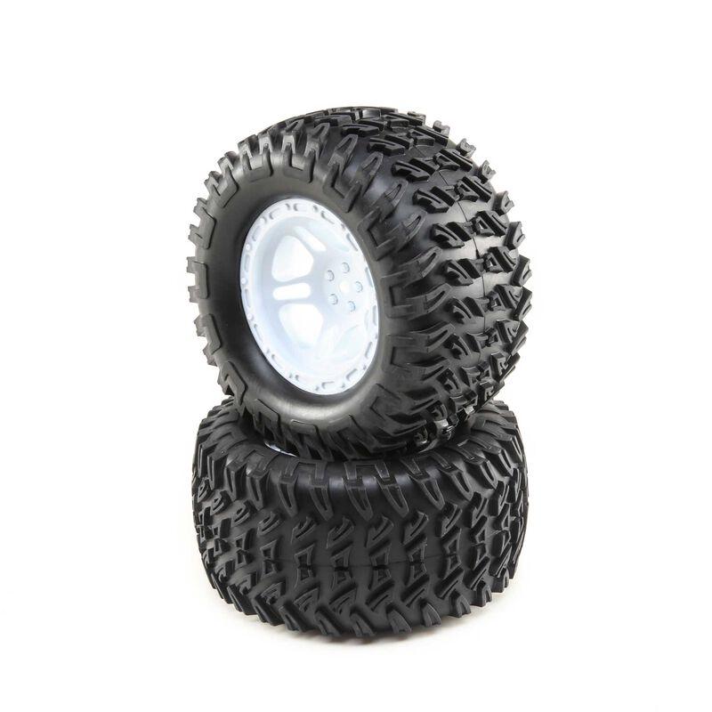 Wheels and Tires Mounted (2): TENACITY MT