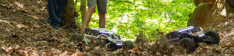 lifestyle image with losi product in woods